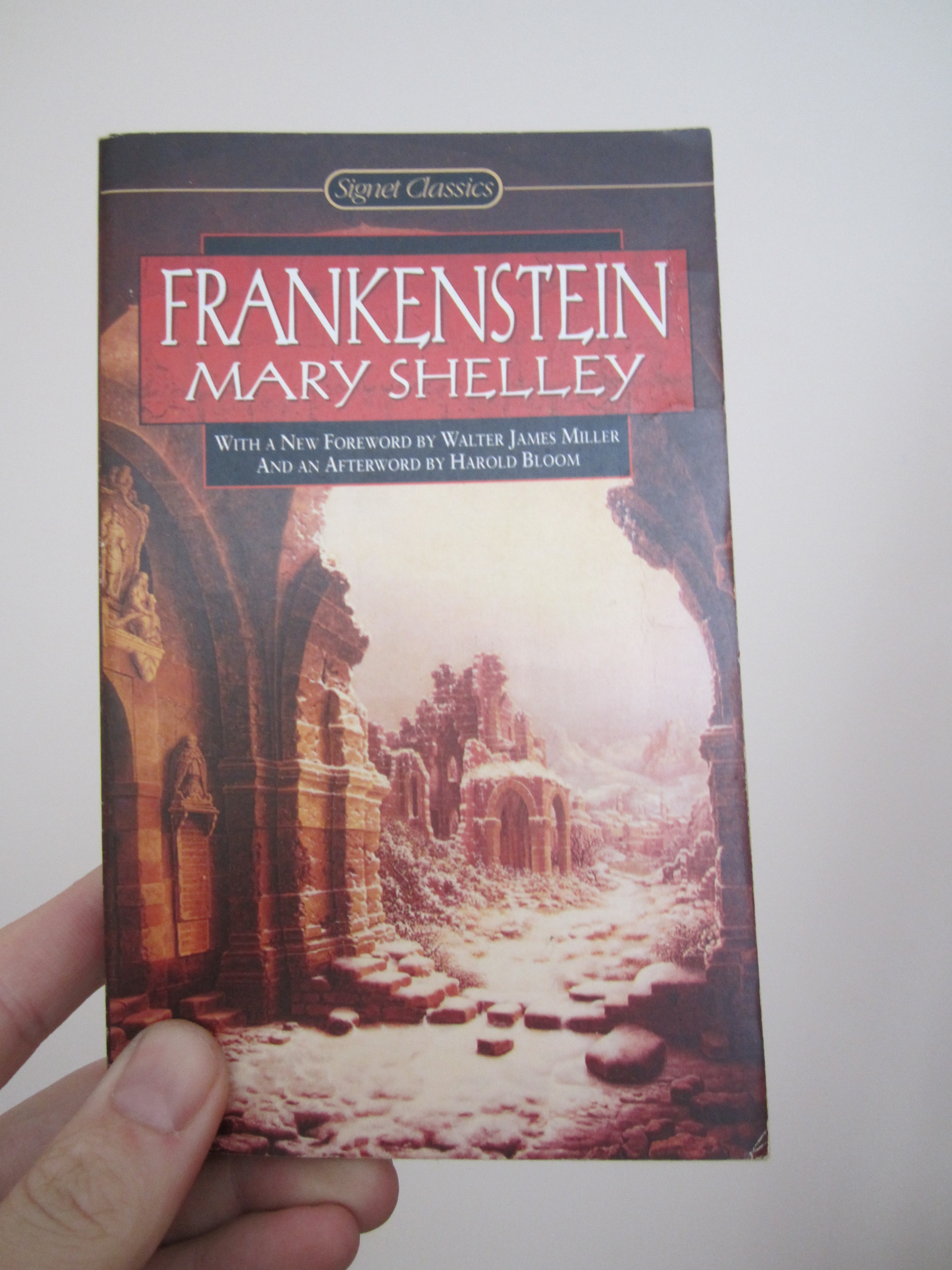 the moral ambiguity in frankenstein a novel by mary shelley Mary shelley's frankenstein and the birth of expected to write a novel that explored social and moral novel of mary shelley, author of frankenstein.
