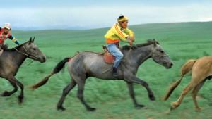 Horse race, Nadaam festival