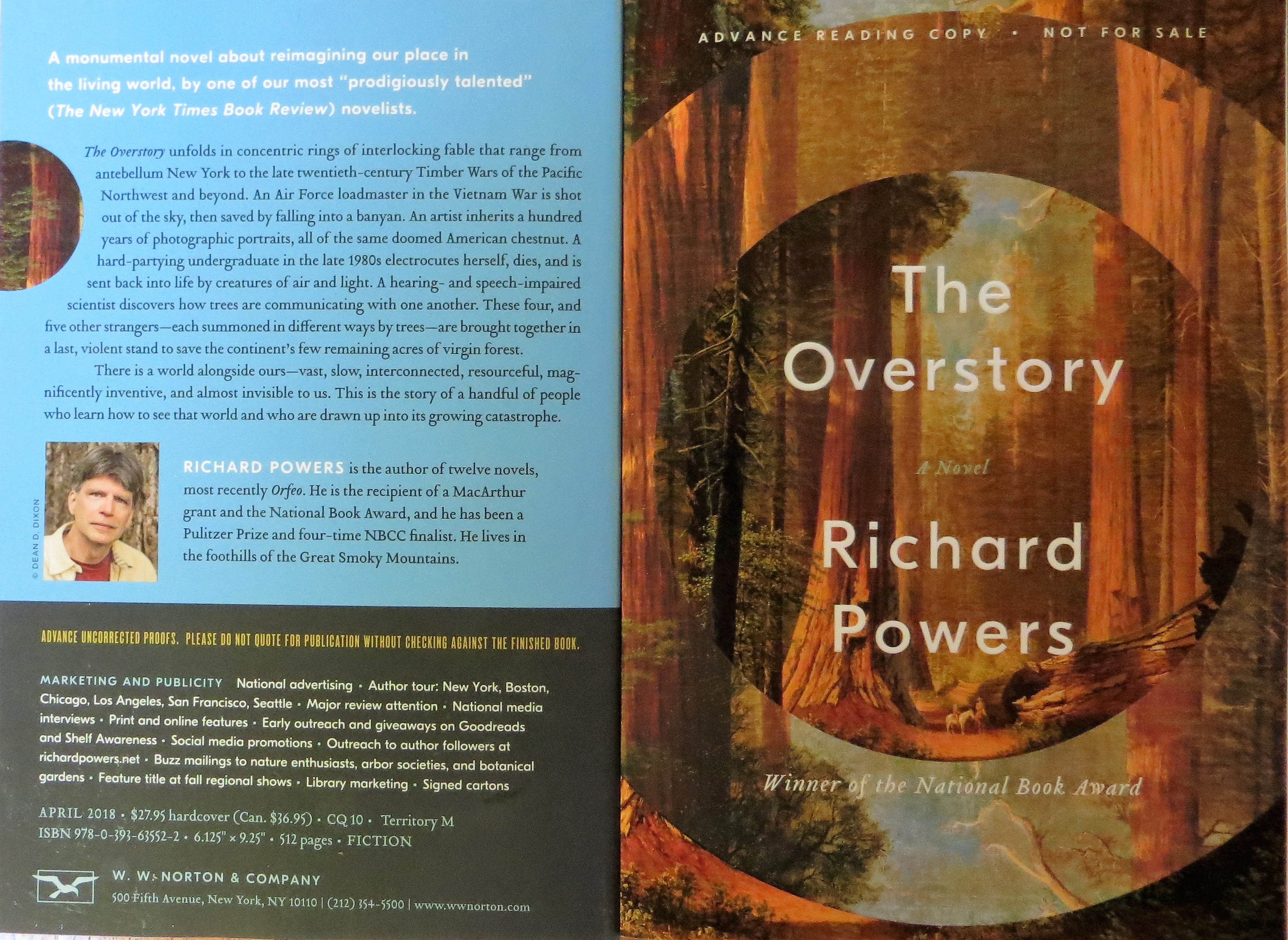 The Overstory 2018 By Richard Powers The Power Of Trees Cg Fewston