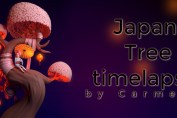 Japan Tree timelapse by Carmela paglionico