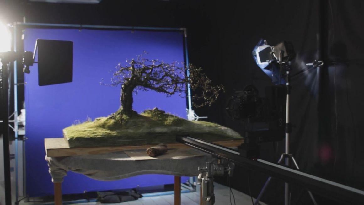 Making of Interflora Melting Hearts