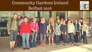 Community Gardens Ireland Belfast 2016