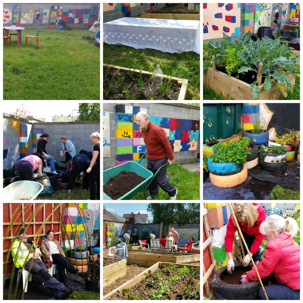 Focus on Gleann na Bearu Community Garden