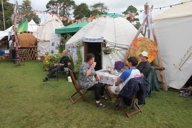global-green-community-garden-at-electric-picnic-by-davie-philip-more-tea