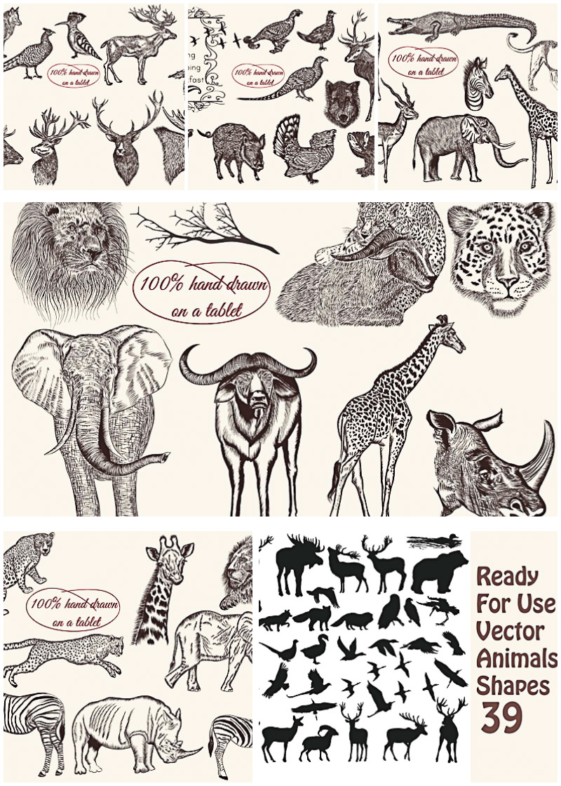 Engraved Wild Animals Vector Bundle Free Download