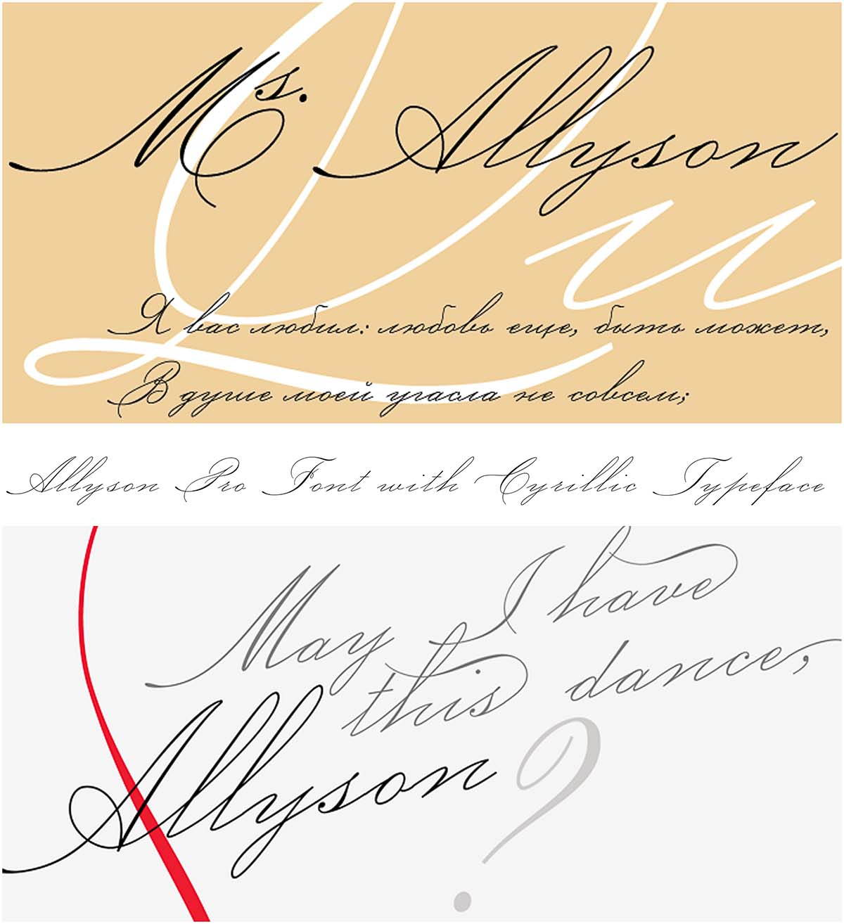 Allyson Pro Font With Cyrillic Typeface