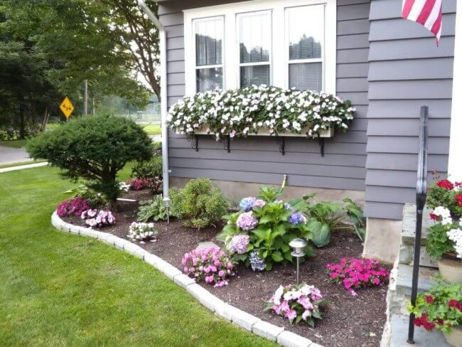 Cheerful Floral Border And Window Boxes