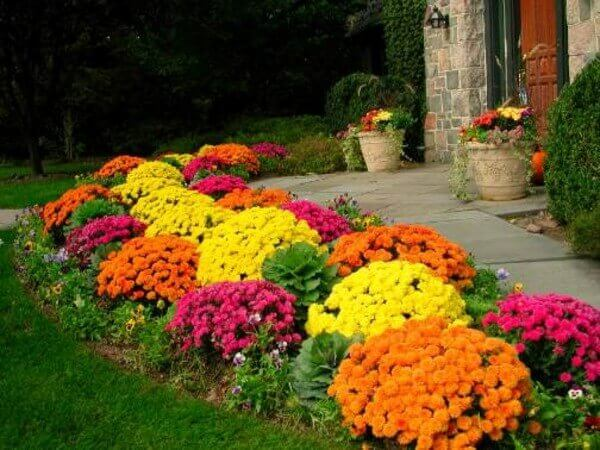The best choices front yard landscaping ideas projects you will love - Best Gardening Ideas On A Budget