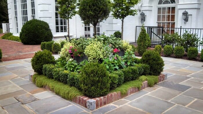 Modest yet Gorgeous and Appealing small garden design to define your curb appeal for house owners - flowers and cacti other growing ideas