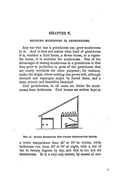 How to Grow Mushrooms: A 19th-Century Approach image 4