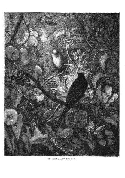 The Fables of Jean de La Fontaine Volume 1: Gustave Doré Restored Special Edition image 9