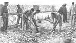Trabajos-forzados_0