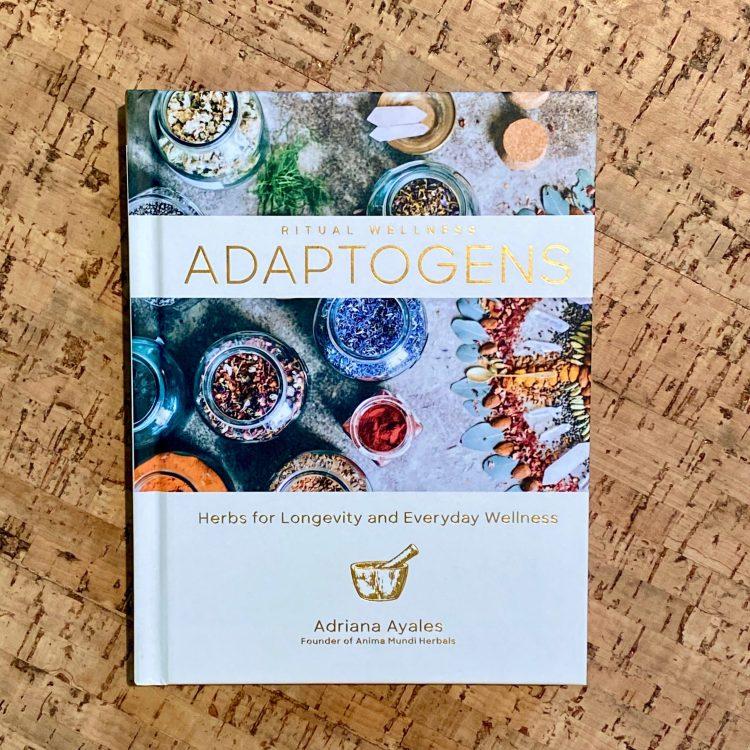Adaptogens: Herbs for Longevity and Everyday Wellness