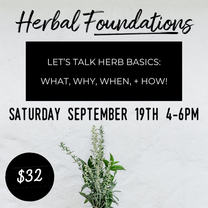 Herbal Foundations (September 19th 4-6pm)