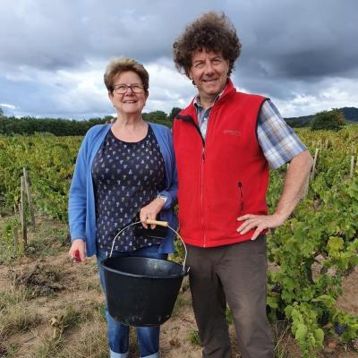 Pacalet vineyard