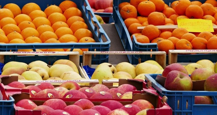 O Outono chegou! Conheça os hortifrutis da estação!