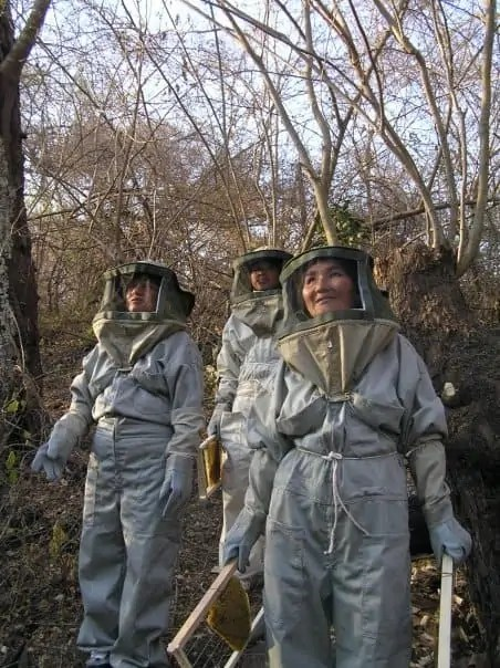 Lady beekeepers in Chimeo