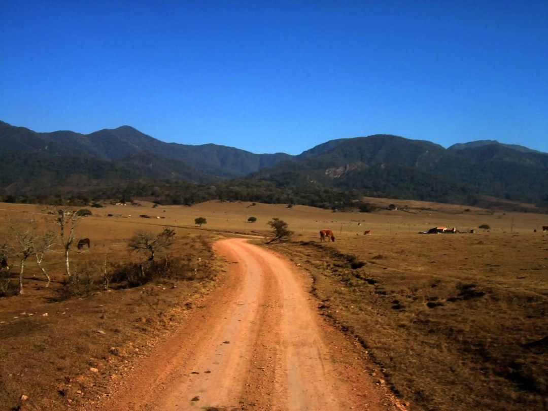 Bolivia Chaco Fund Dry Road Iniguazu