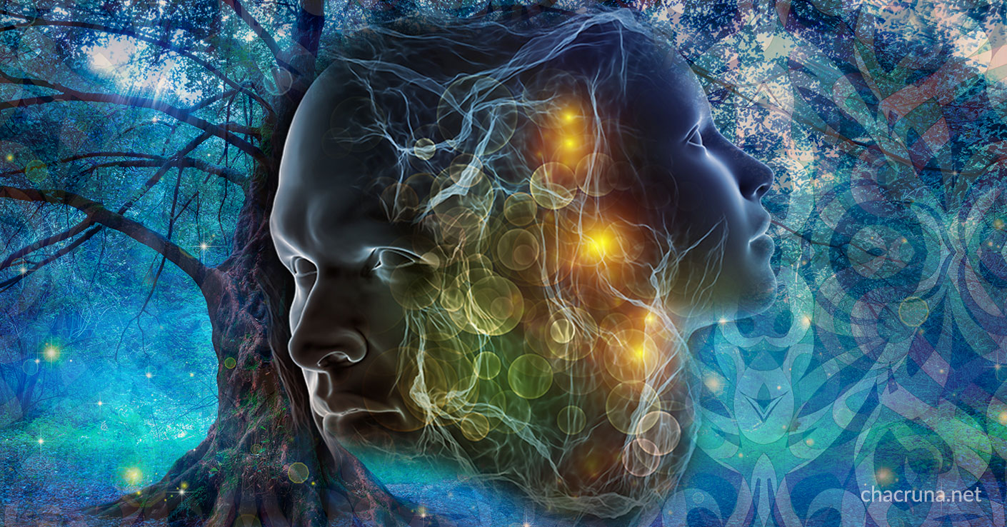 7 Ways To Cultivate Your Ayahuasca Experience | Chacruna