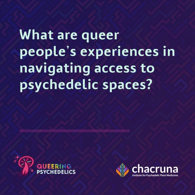What are queer people's experiences in navigating access to psychedelic spaces?