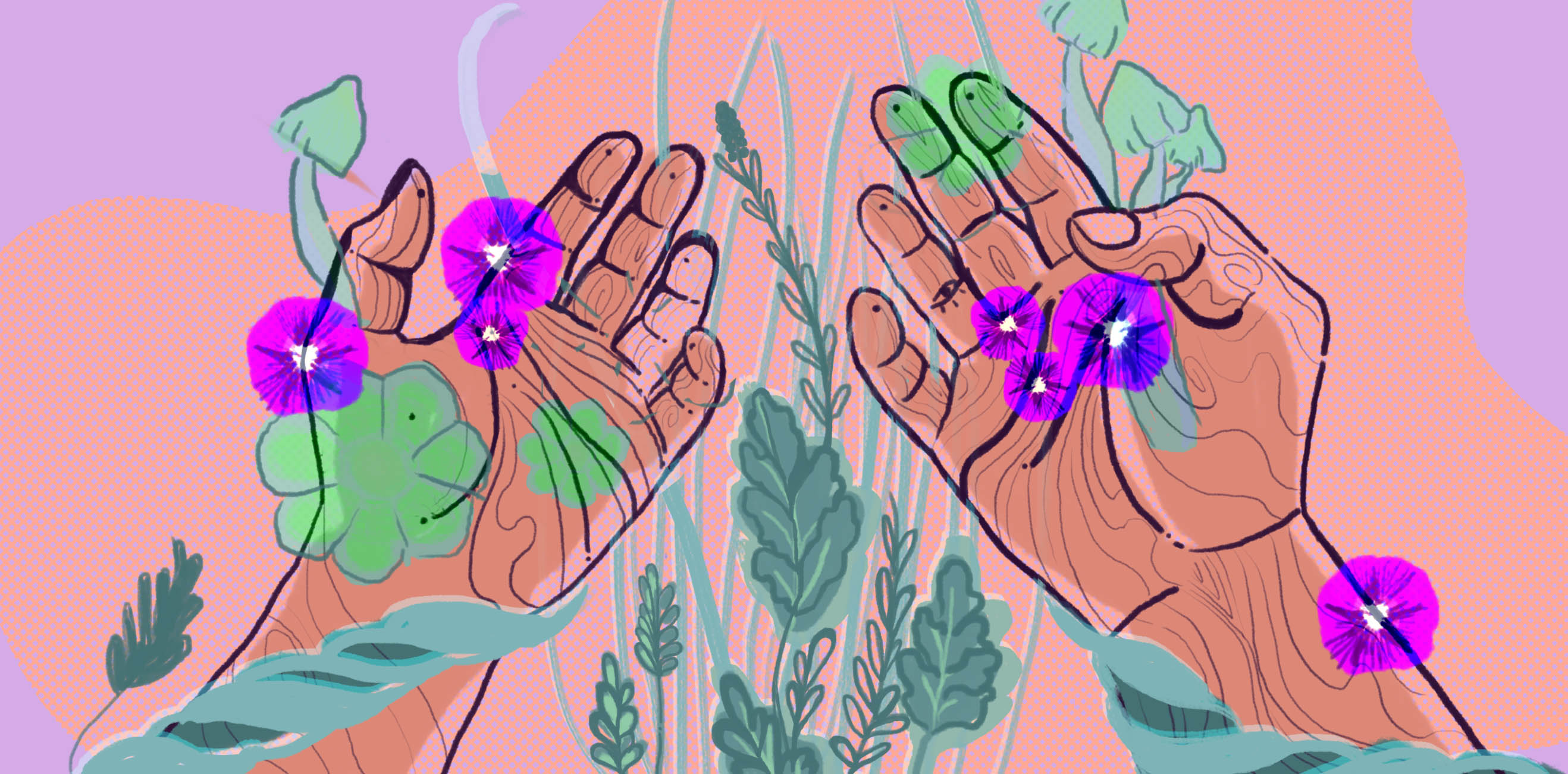 Ethical and Sustainable Access to Entheogenic Plants   Chacruna