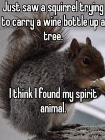 funny-squirrel-tree-wine-bottle-1
