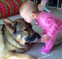 whatever-happens-dont-say-awww-27-photos-19