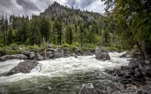 hdr_landscapes_mountains_trees_forest_rapids_1920x1200