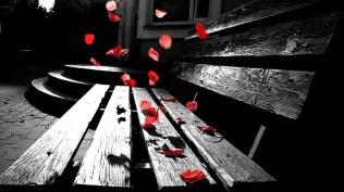 mood_bench_selective_color_flowers_petal_1920x1080