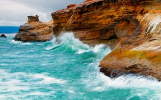 nature_coast_birds_waves_animals_rocks_cliffs_sea_1920x1200