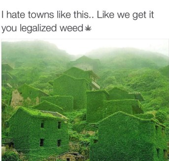 best-damn-photos-legalized-weed-towns