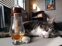 best-damn-photos-cat-loves-whisky