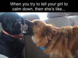 best-damn-photos-girl-calm-down