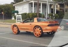 best-damn-photos-orange-transam