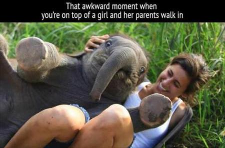 best-damn-photos-parents-walkin