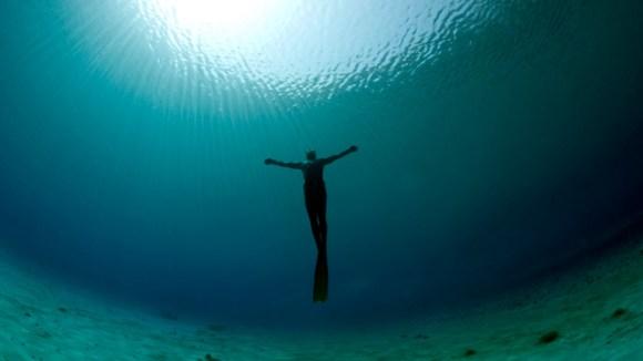 freedivercrop