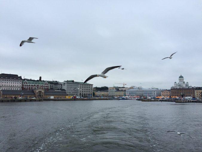 Helsinki-birds