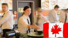 مطلوب طباخين ونوادل في عدة درجات وتخصصات بدولة كندا