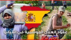 عقود العمل الموسمية في إسبانيا