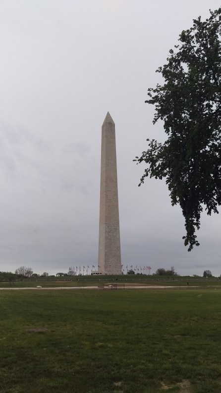 Washington Monument from Constitution Ave