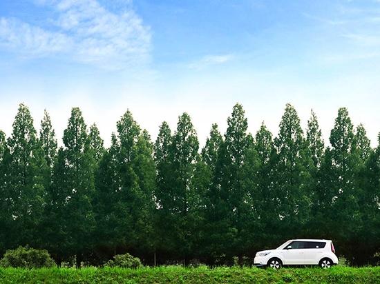 Kia Soul in Green Landscape