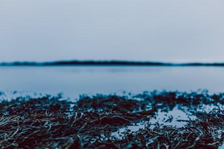 Iceland Web-041