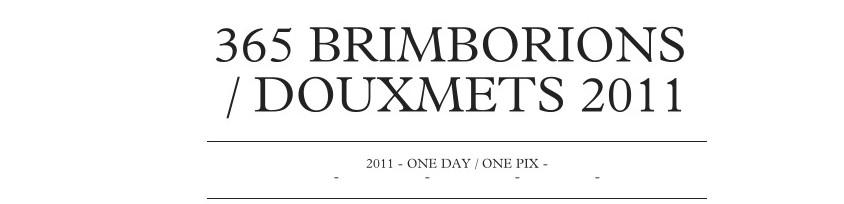 brimborions 365 - Douxmets 2011