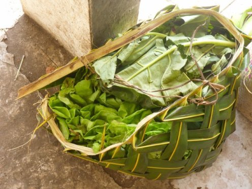 feuilles de brèdes dans un panier