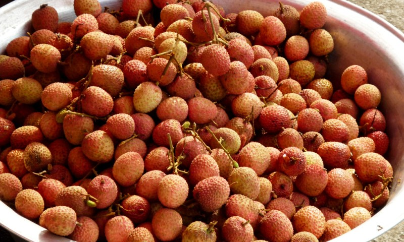 lychees - 365 / one day, one pix, #12