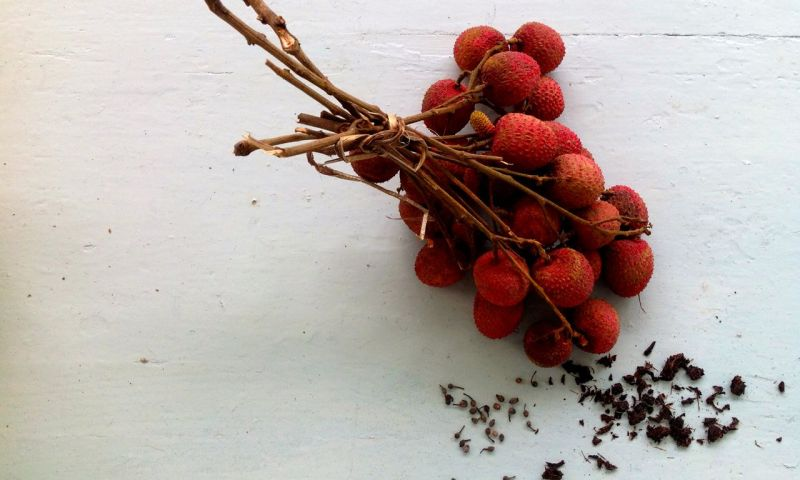 rhum arrangé lychee