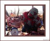 pesage-de-la-viande2