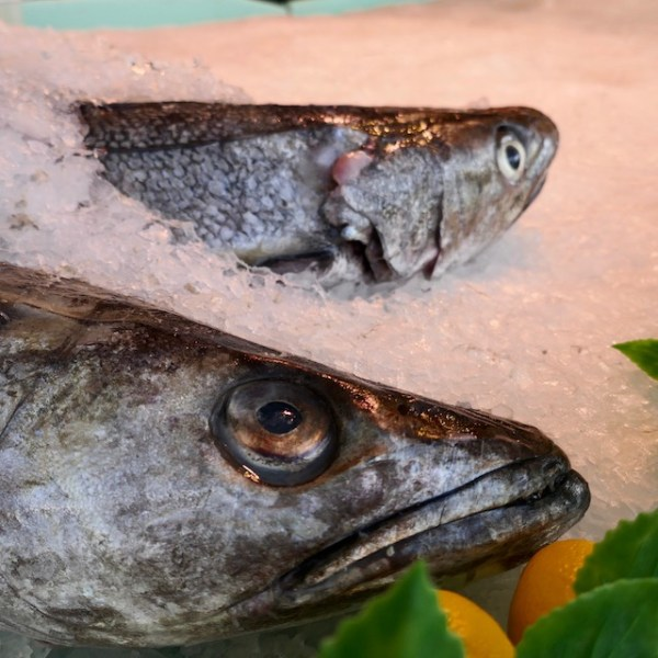 tête de poisson