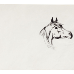 Pen Ink Arabian Horse Drawing Chairish