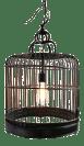 Vintage Bird Cage Pendant Light Chairish
